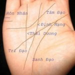 Xem bói, xem số mệnh qua bàn tay (Phần 1)