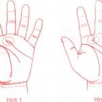 Xem bói bàn tay để dự đoán được nhân duyên đẹp hay xấu